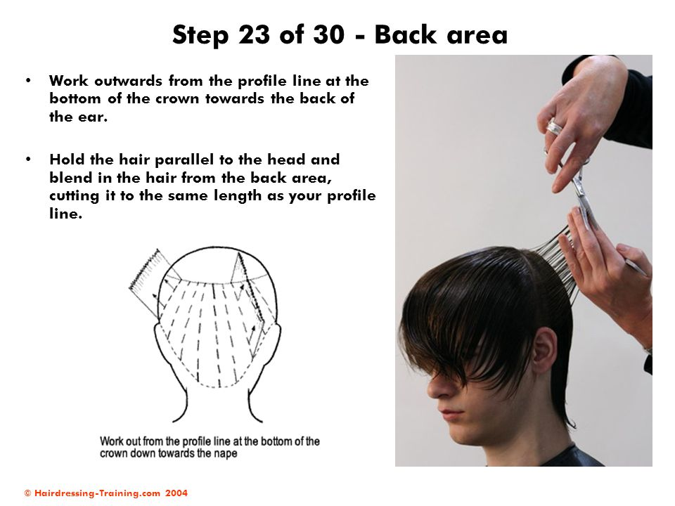 Step 23 of 30 - Back area Work outwards from the profile line at the bottom of the crown towards the back of the ear.