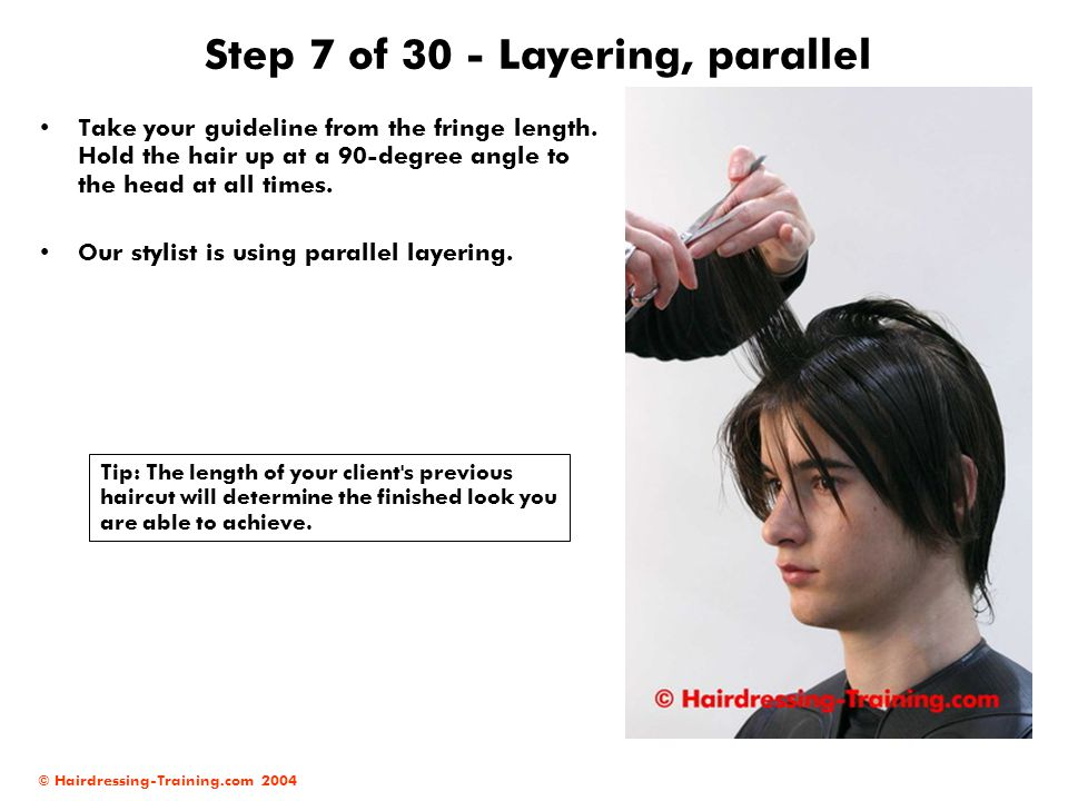 Step 7 of 30 - Layering, parallel