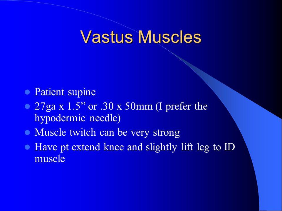 Vastus Muscles Patient supine
