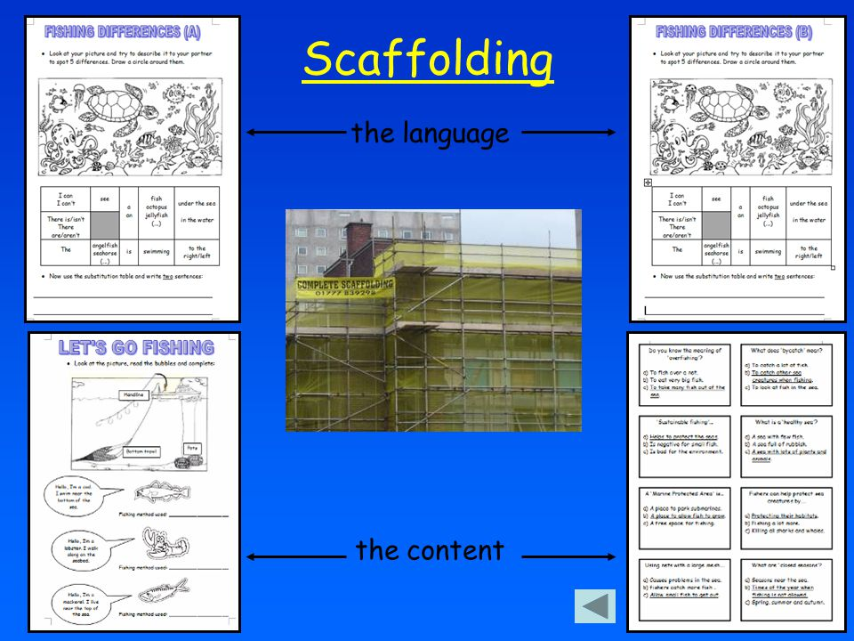 Scaffolding the language the content