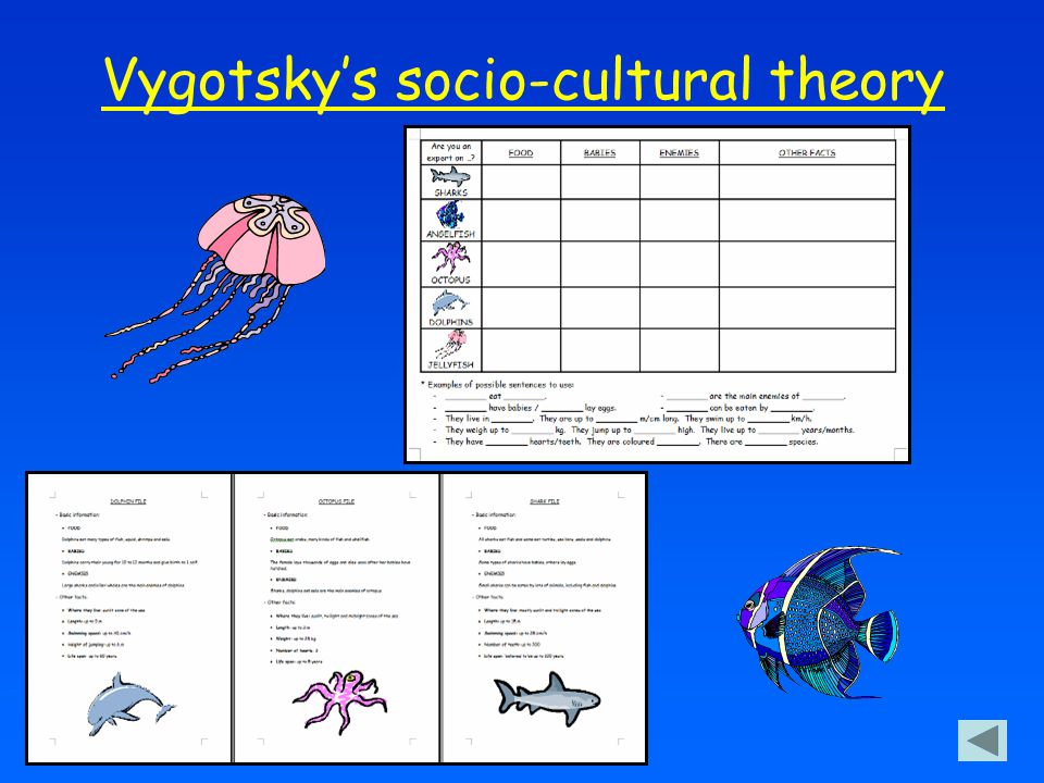 Vygotsky's socio-cultural theory