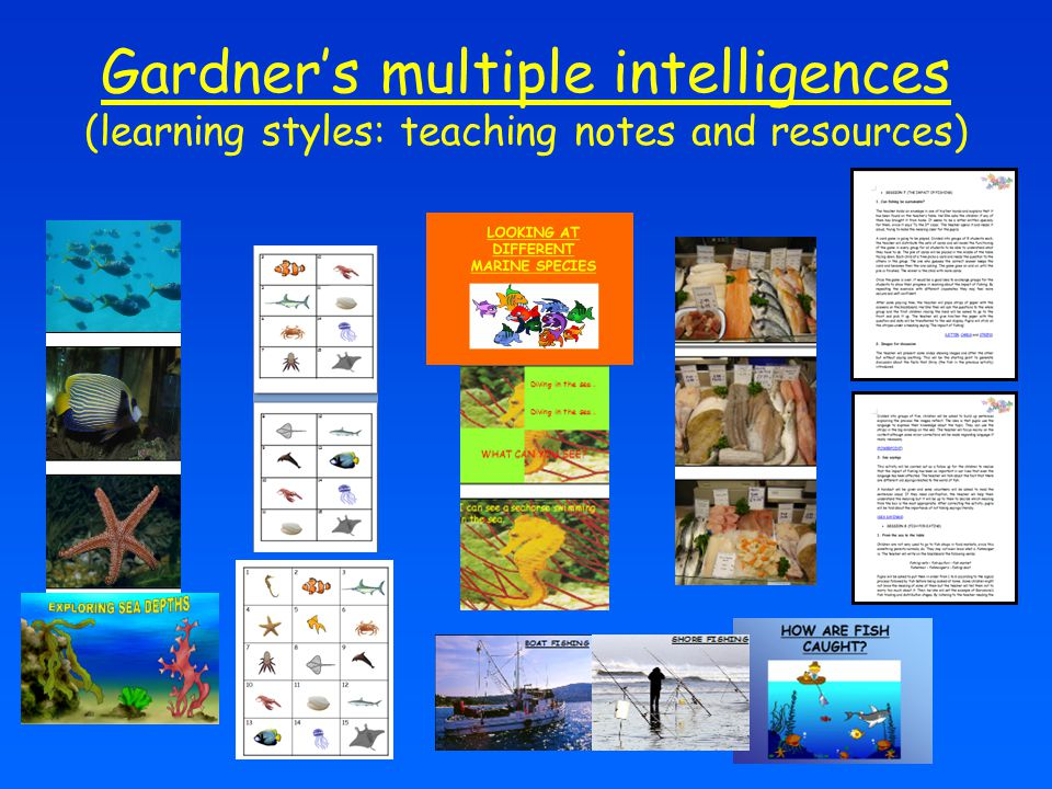 Gardner's multiple intelligences (learning styles: teaching notes and resources)