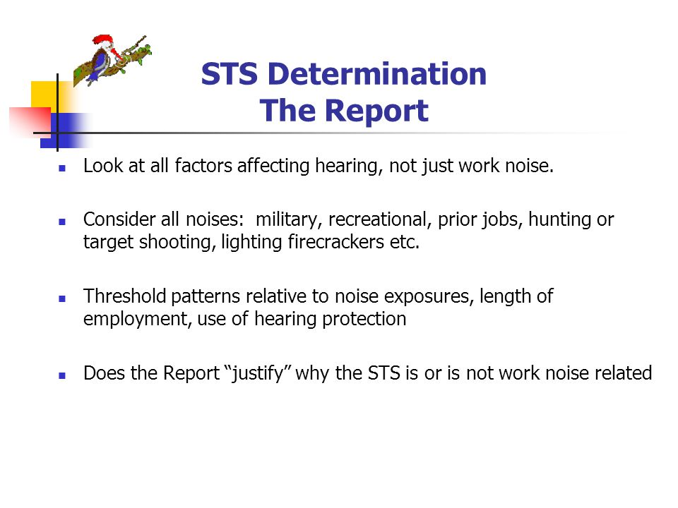 STS Determination The Report