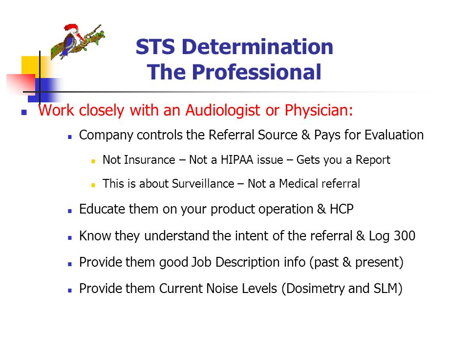 STS Determination The Professional