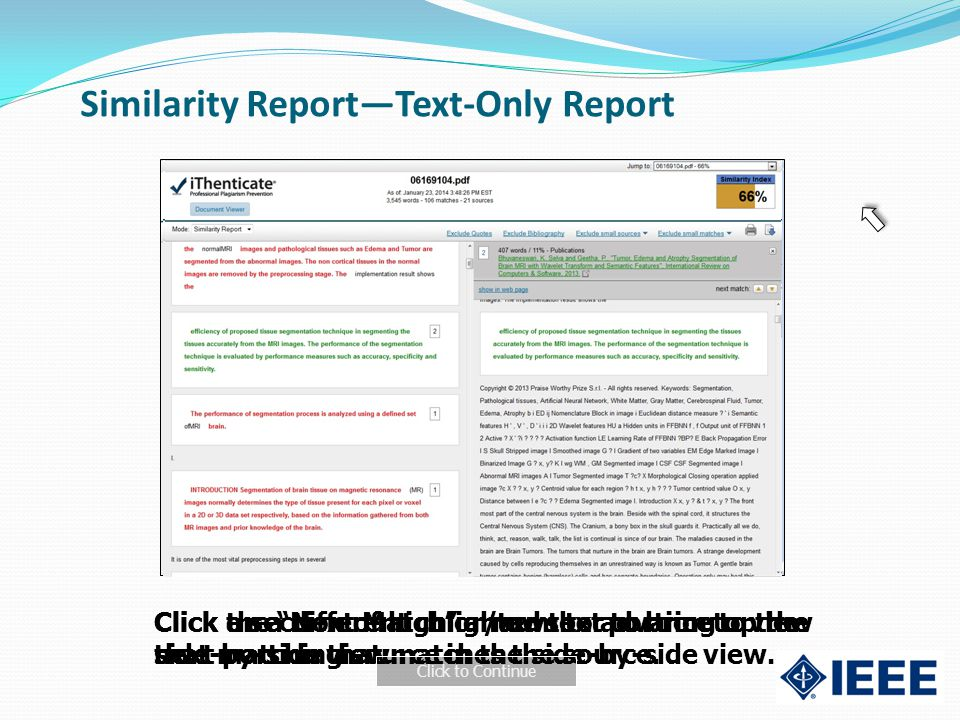 Similarity Report—Text-Only Report