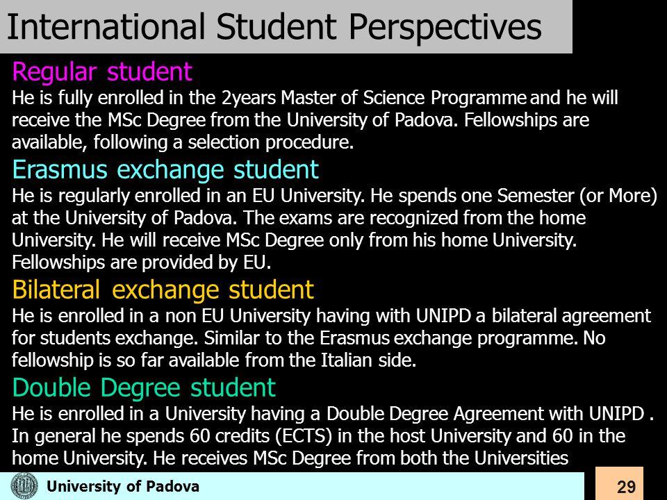 International Student Perspectives