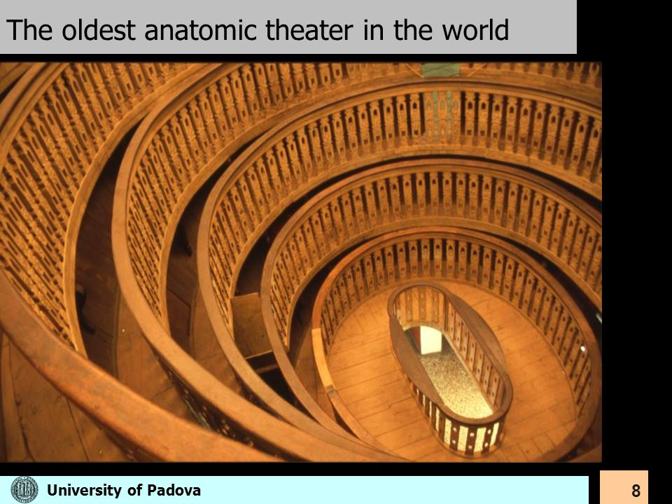 The oldest anatomic theater in the world