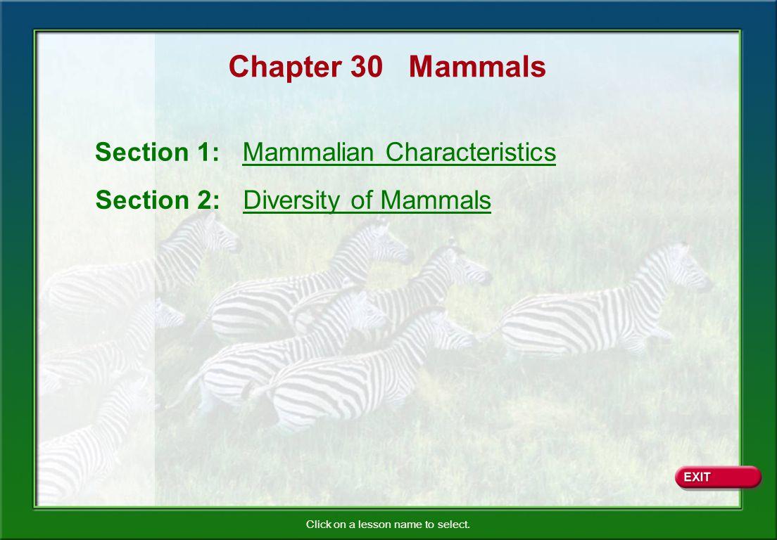 Chapter 30 Mammals Section 1: Mammalian Characteristics