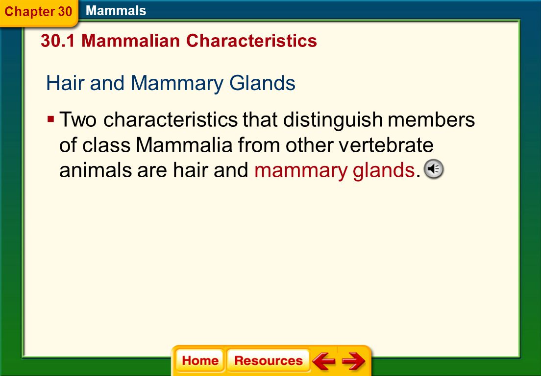 Hair and Mammary Glands