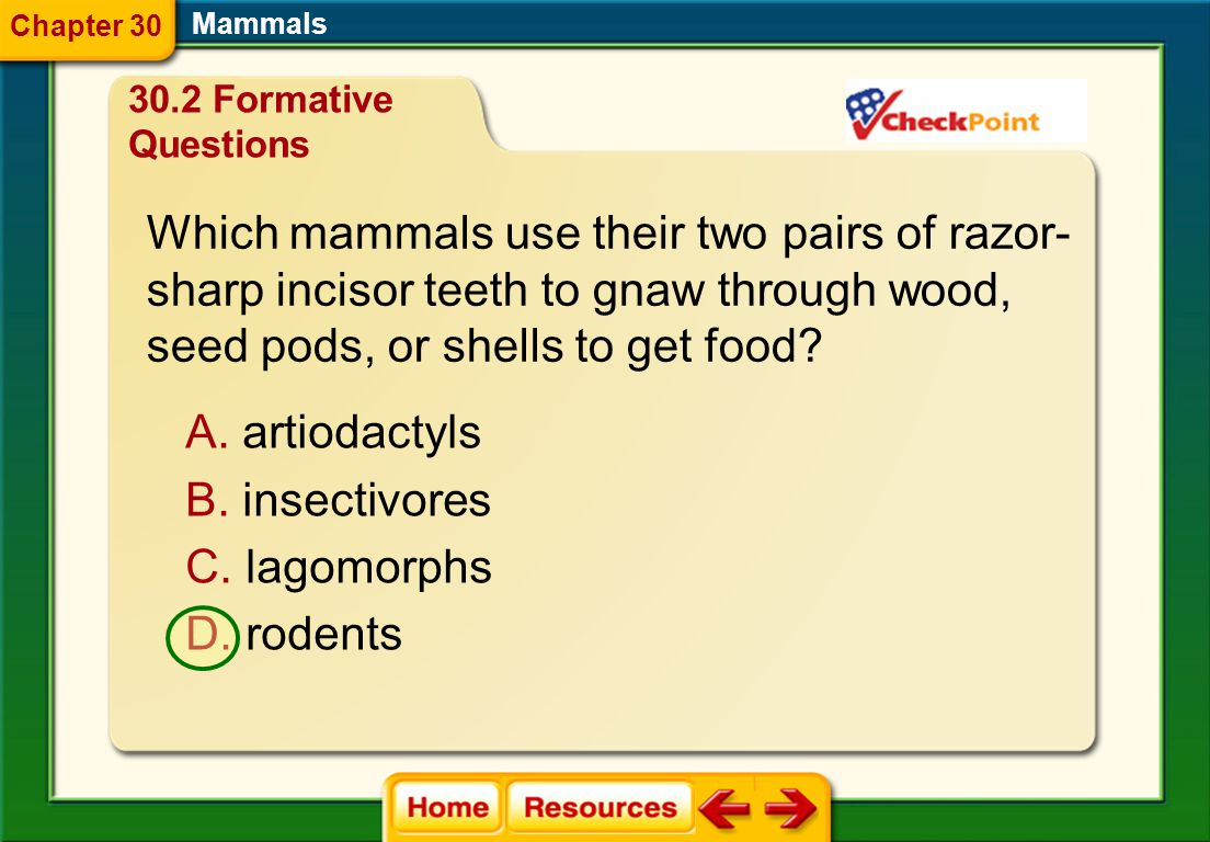 Which mammals use their two pairs of razor-