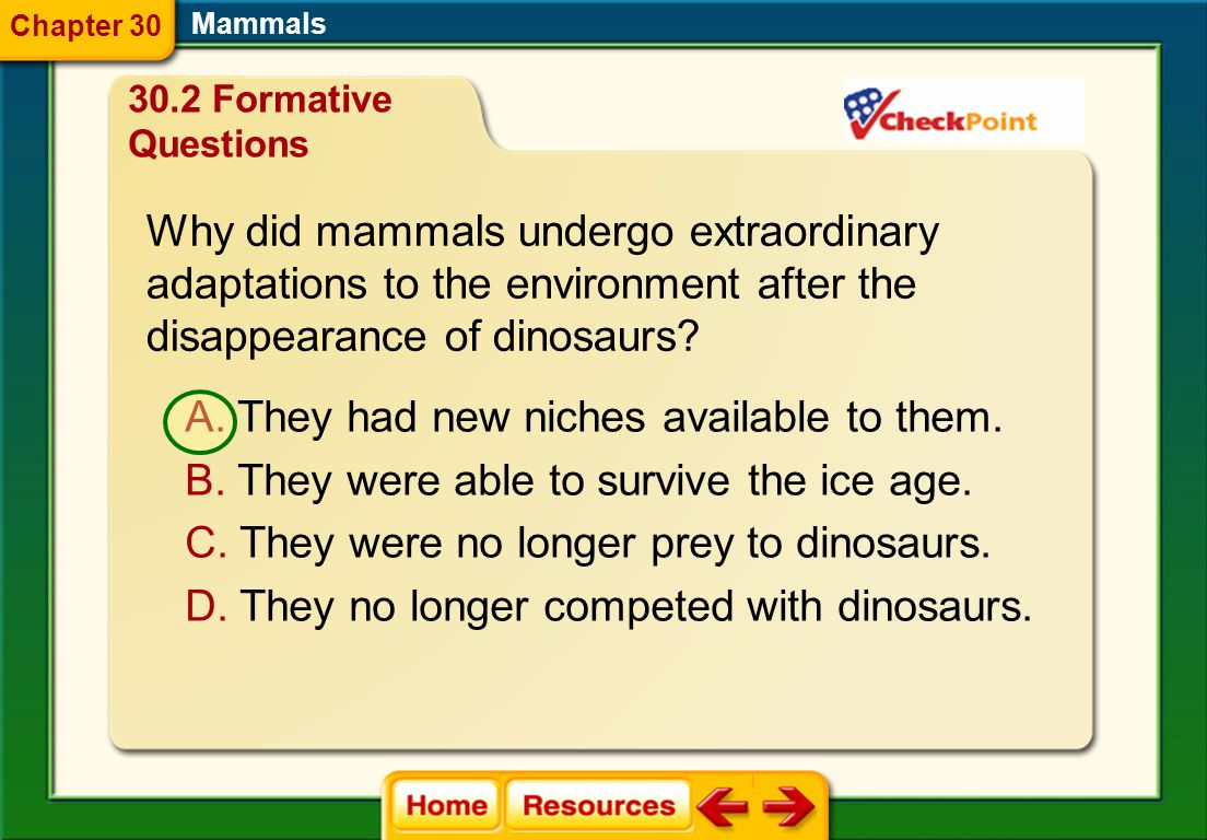 Why did mammals undergo extraordinary