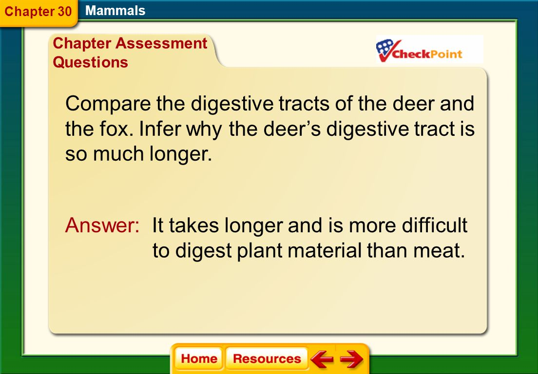 Compare the digestive tracts of the deer and
