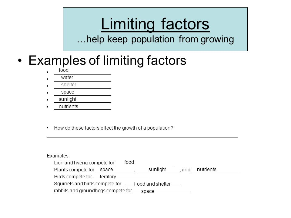 Limiting factors …help keep population from growing