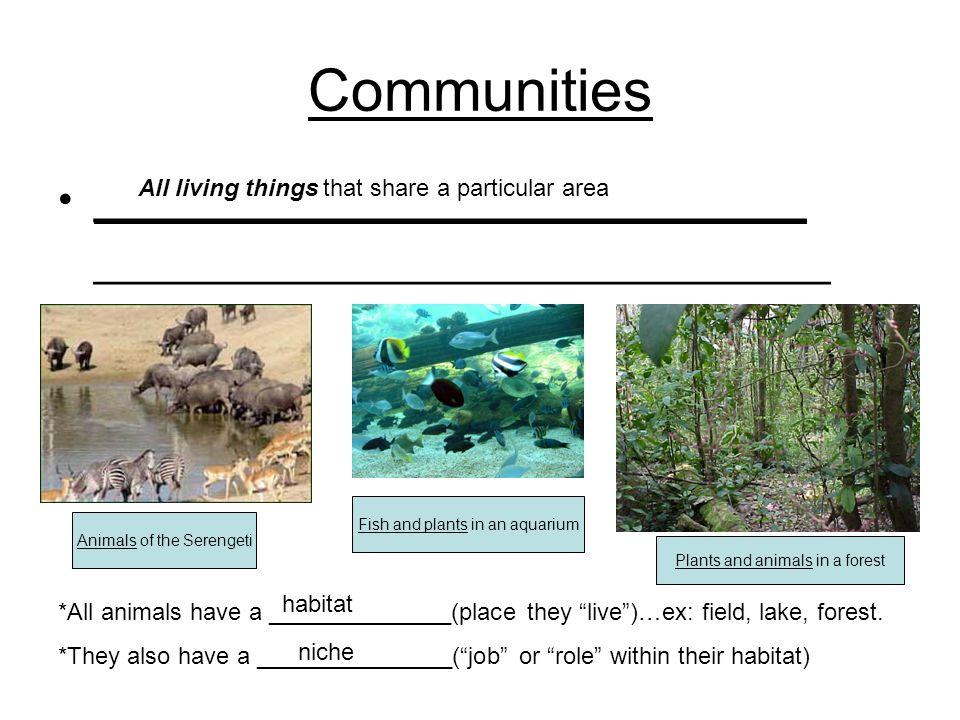 Communities ______________________________