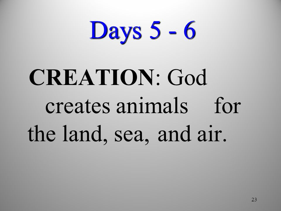 Days 5 - 6 CREATION: God creates animals for the land, sea, and air.