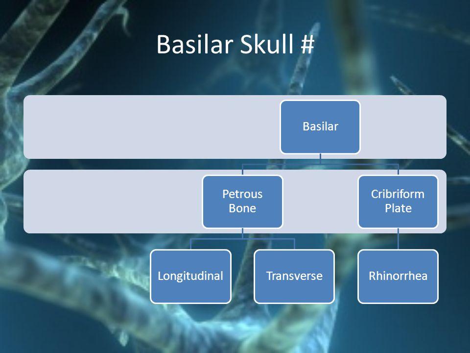 Basilar Skull # Basilar Petrous Bone Longitudinal Transverse