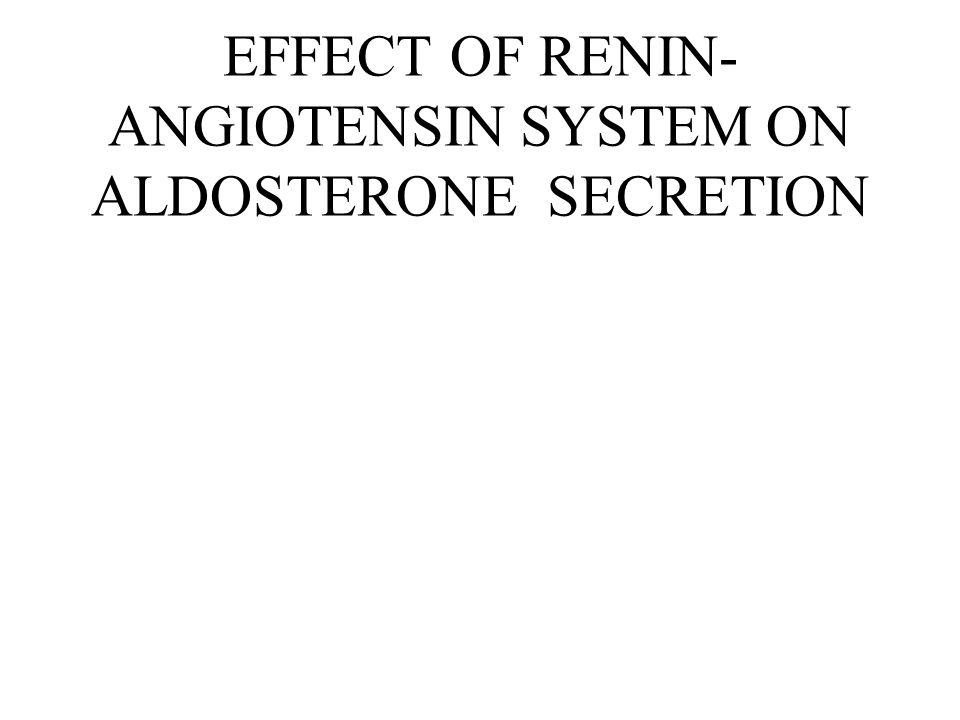 EFFECT OF RENIN-ANGIOTENSIN SYSTEM ON ALDOSTERONE SECRETION