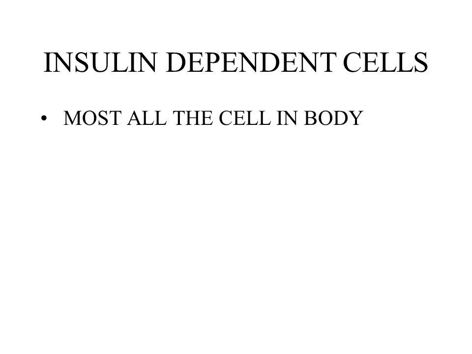 INSULIN DEPENDENT CELLS