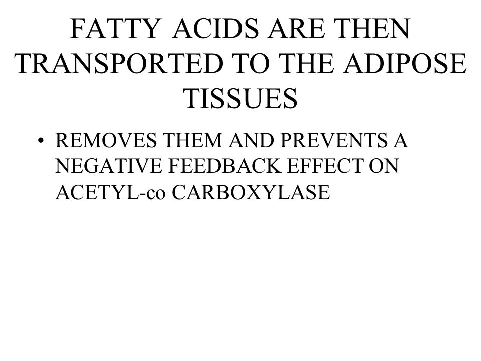 FATTY ACIDS ARE THEN TRANSPORTED TO THE ADIPOSE TISSUES