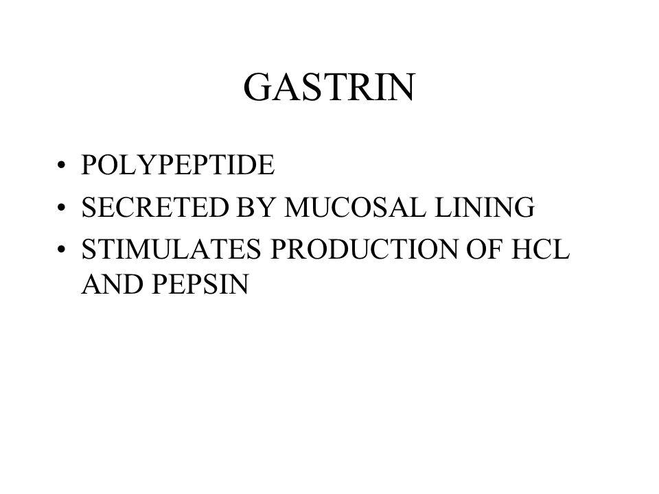 GASTRIN POLYPEPTIDE SECRETED BY MUCOSAL LINING