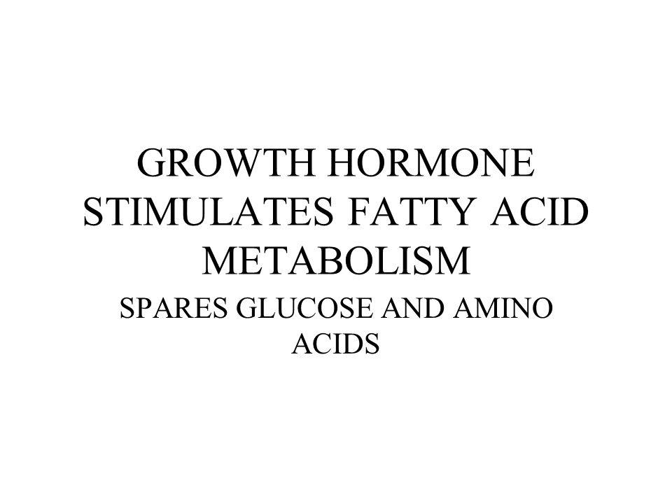 GROWTH HORMONE STIMULATES FATTY ACID METABOLISM
