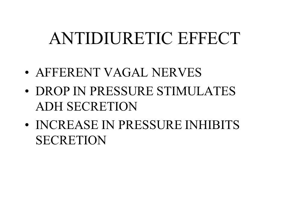 ANTIDIURETIC EFFECT AFFERENT VAGAL NERVES