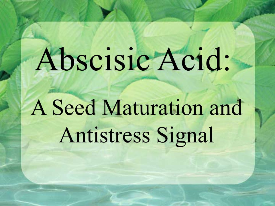 A Seed Maturation and Antistress Signal
