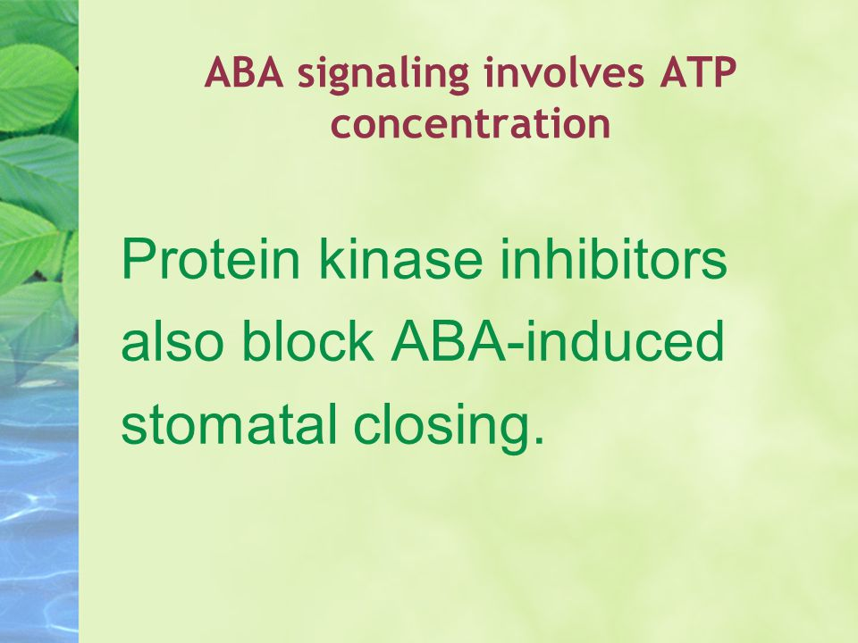 ABA signaling involves ATP concentration