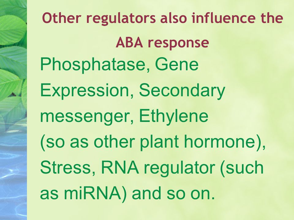 Other regulators also influence the ABA response