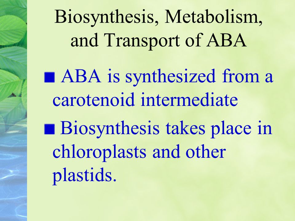 Biosynthesis, Metabolism, and Transport of ABA