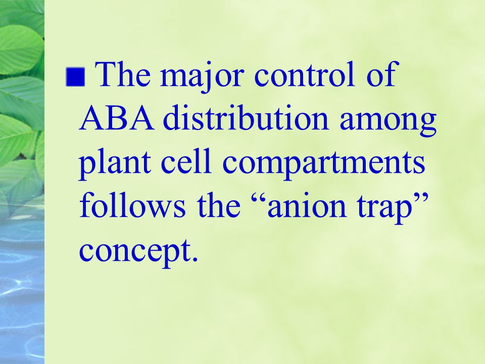 The major control of ABA distribution among plant cell compartments follows the anion trap concept.
