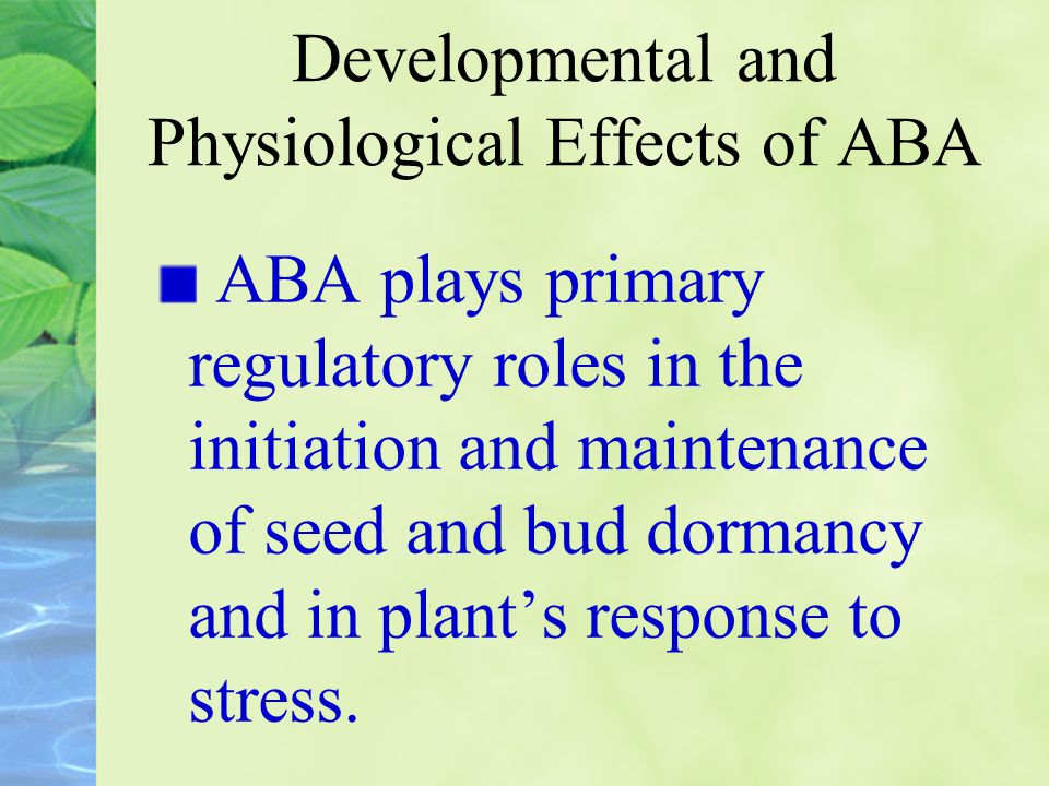 Developmental and Physiological Effects of ABA