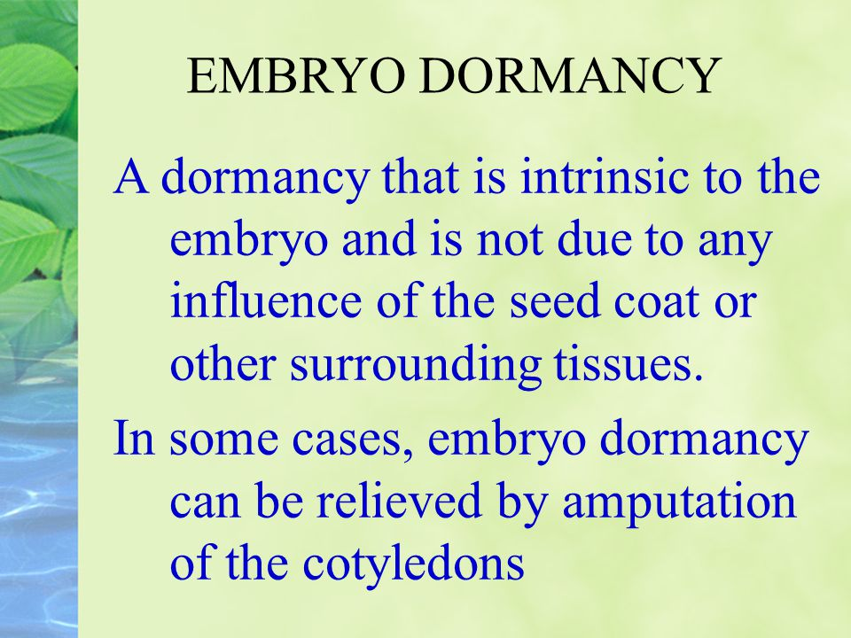 EMBRYO DORMANCY A dormancy that is intrinsic to the embryo and is not due to any influence of the seed coat or other surrounding tissues.