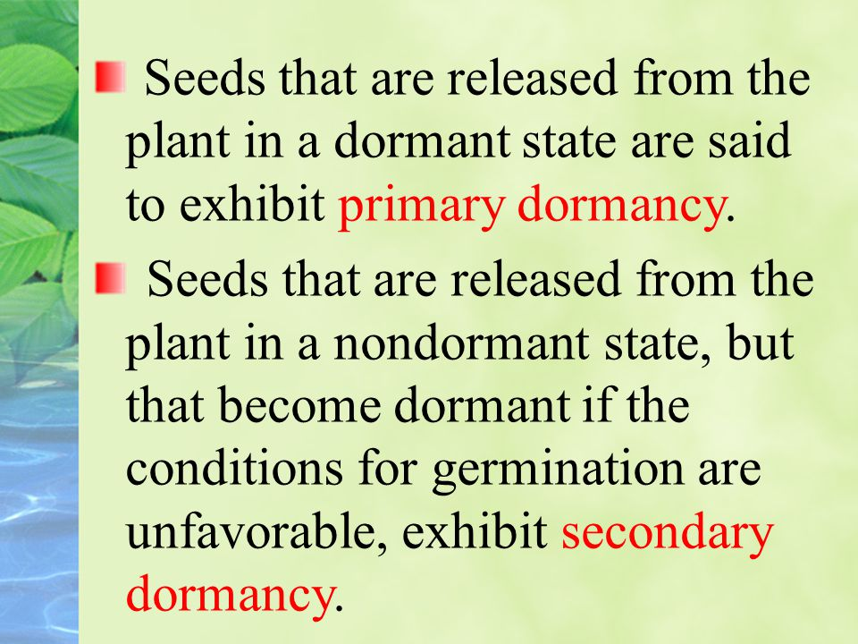 Seeds that are released from the plant in a dormant state are said to exhibit primary dormancy.