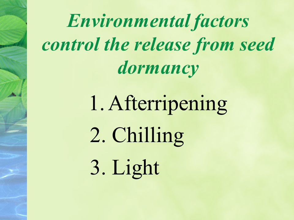 Environmental factors control the release from seed dormancy