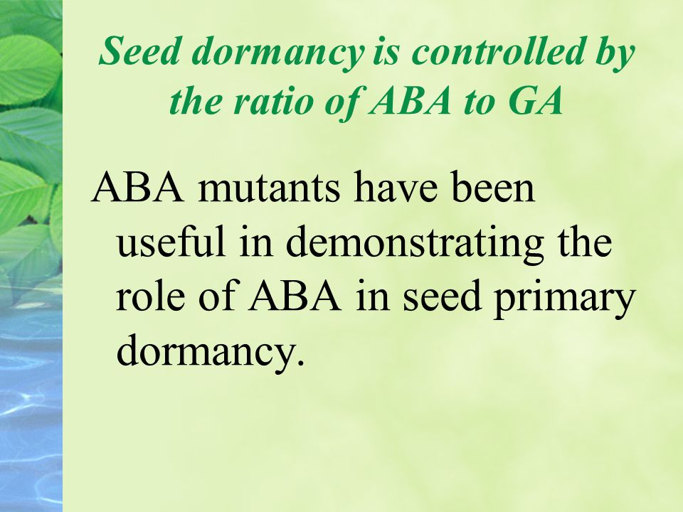 Seed dormancy is controlled by the ratio of ABA to GA