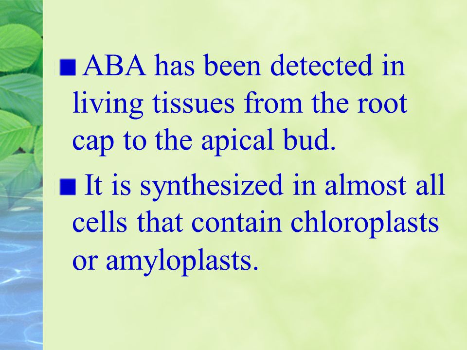 ABA has been detected in living tissues from the root cap to the apical bud.