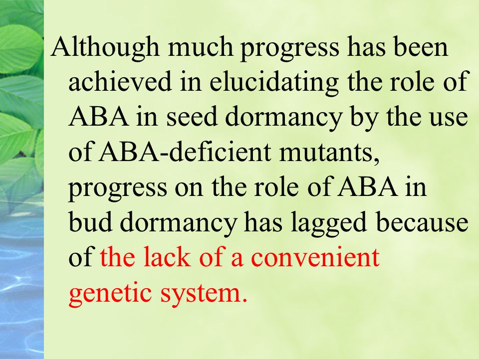 Although much progress has been achieved in elucidating the role of ABA in seed dormancy by the use of ABA-deficient mutants, progress on the role of ABA in bud dormancy has lagged because of the lack of a convenient genetic system.