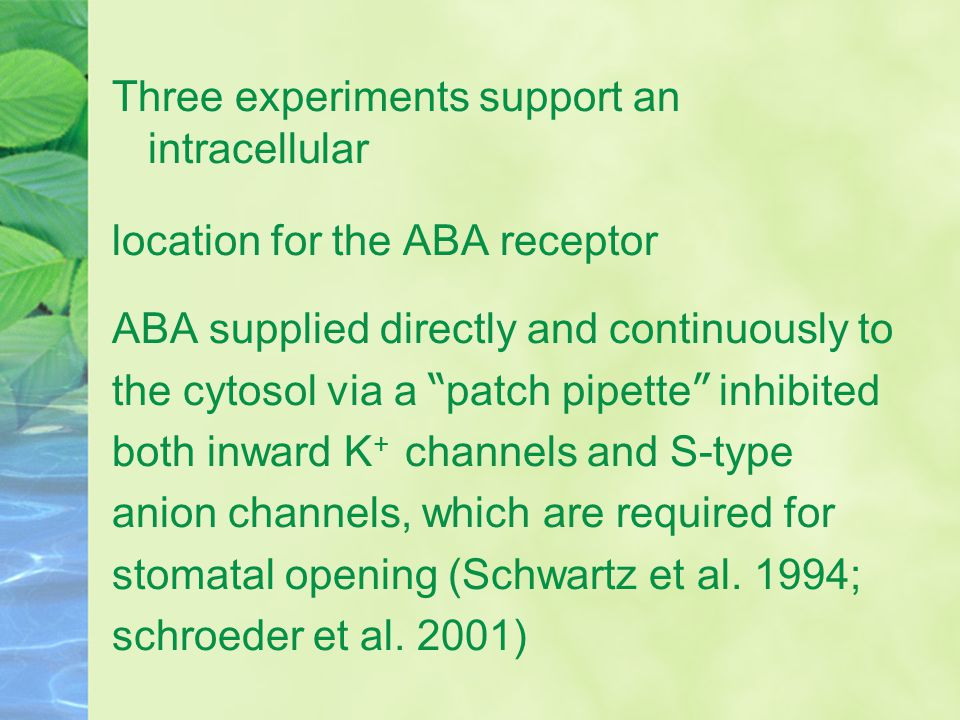 Three experiments support an intracellular