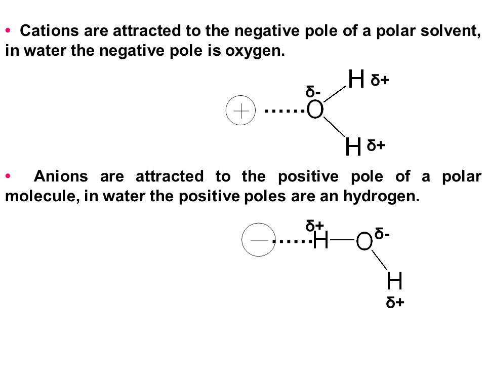 • Cations are attracted to the negative pole of a polar solvent, in water the negative pole is oxygen.