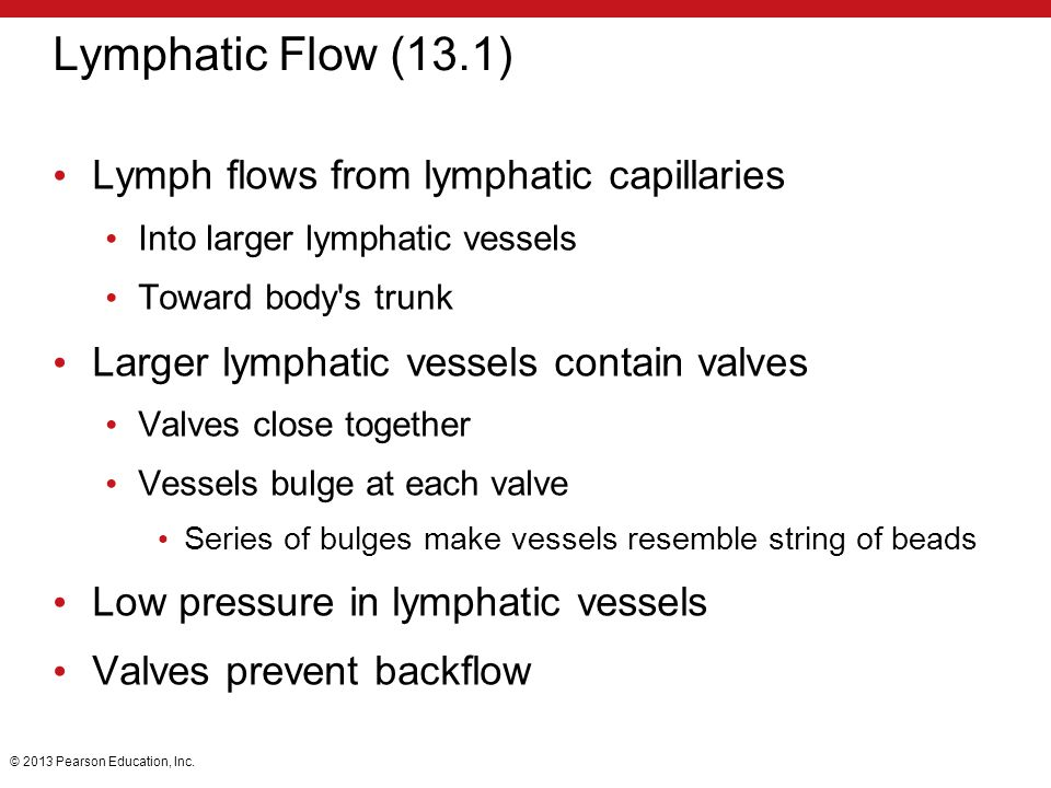Lymphatic Flow (13.1) Lymph flows from lymphatic capillaries