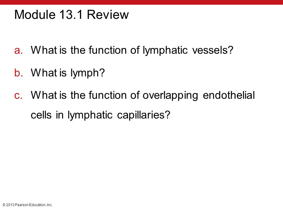 Module 13.1 Review What is the function of lymphatic vessels