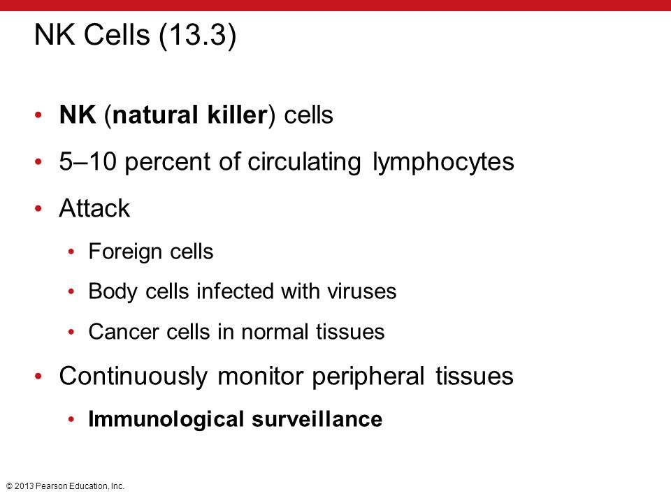 NK Cells (13.3) NK (natural killer) cells