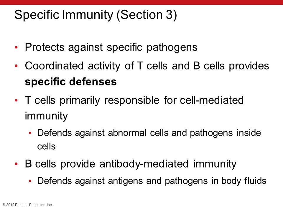 Specific Immunity (Section 3)