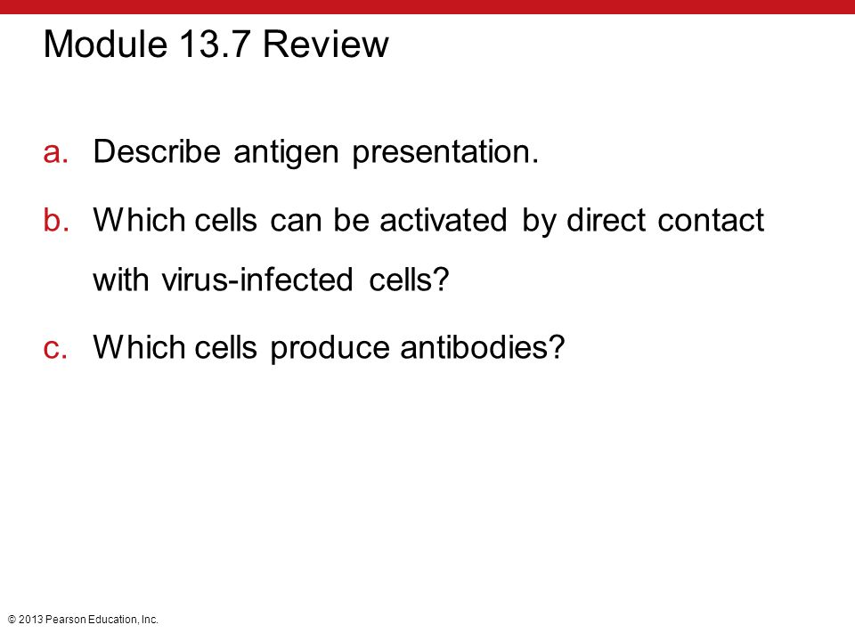 Module 13.7 Review Describe antigen presentation.