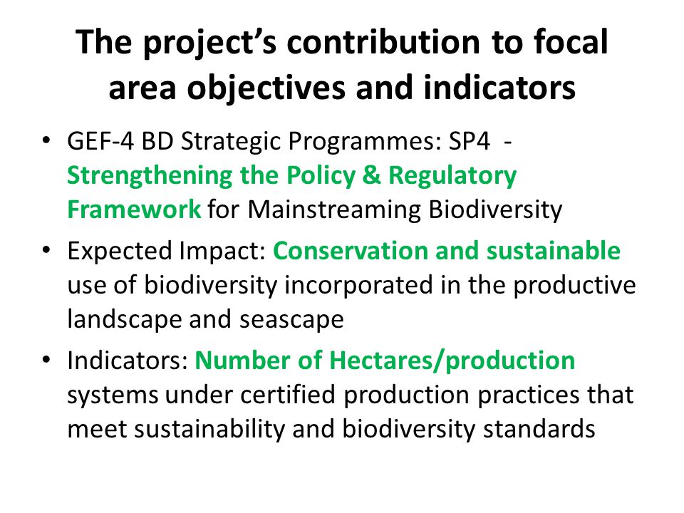 The project's contribution to focal area objectives and indicators