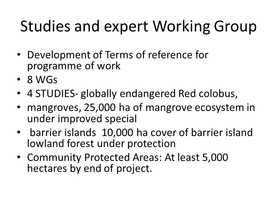 Studies and expert Working Group
