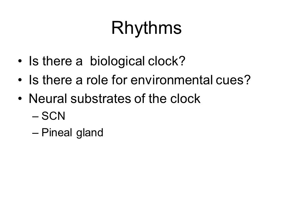 Rhythms Is there a biological clock