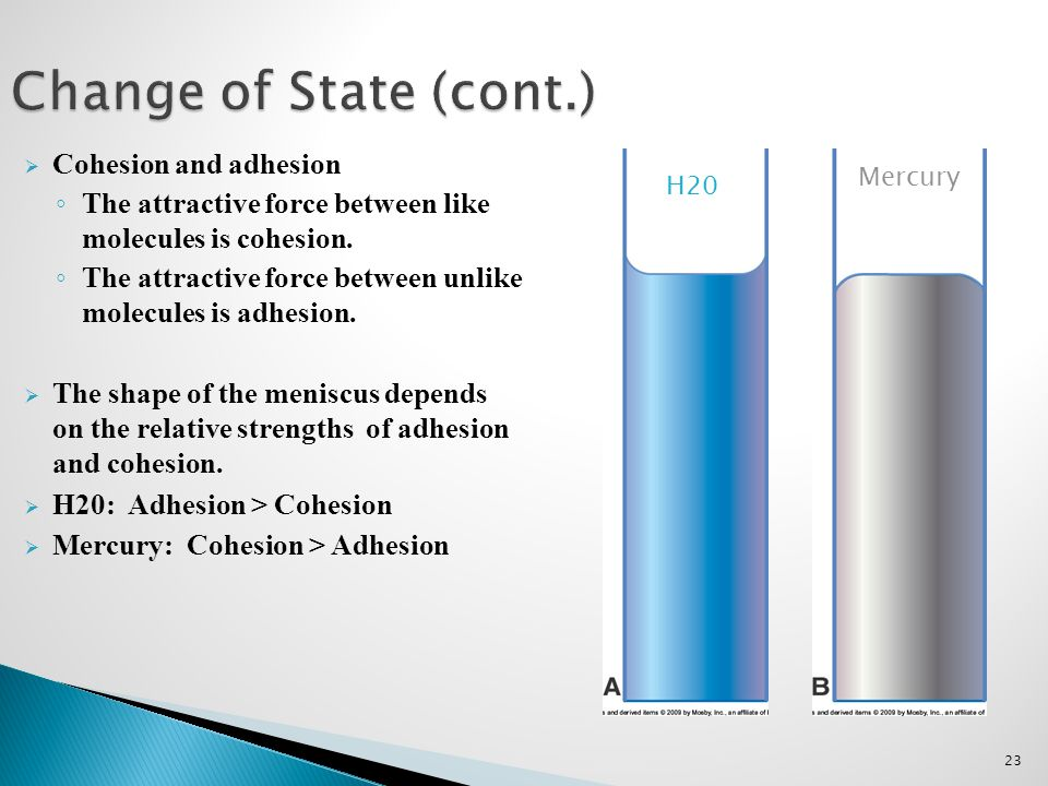 Change of State (cont.) Cohesion and adhesion