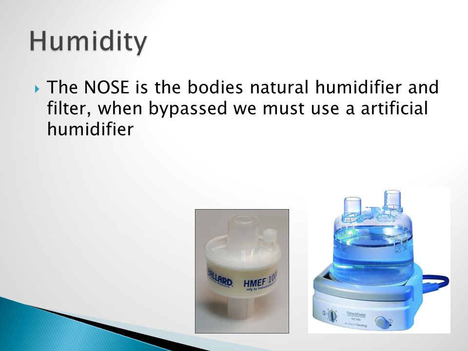 Humidity The NOSE is the bodies natural humidifier and filter, when bypassed we must use a artificial humidifier.